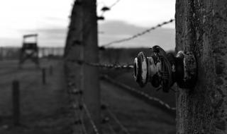 « Albums d'Auschwitz », le film