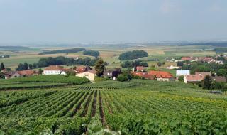 Salon des vins et vignerons indépendants