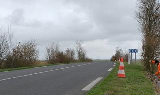 1.150 mètres de haies plantés au bord des routes départementales