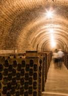La Cité du Champagne - Visite en anglais