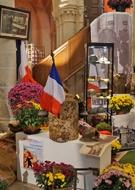 Exposition de Chrysanthèmes