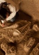 Les Rendez-vous en Champagne - Visite et atelier de fouilles à la Cave aux Coquillages