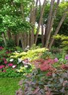 Rendez-Vous aux Jardins : Jardin l\'Eau Vive