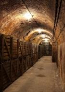 Caves Ouvertes - Champagne BAUCHET