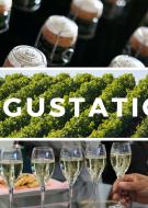 Dégustation du champagne Froment Griffon