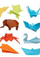 Carte Blanche : Origami