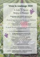 Vendanges 2020 - Le Sentier du vigneron