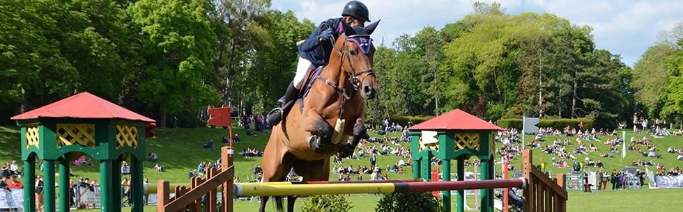 Jumping international et show équestre au Parc de Champagne de Reims