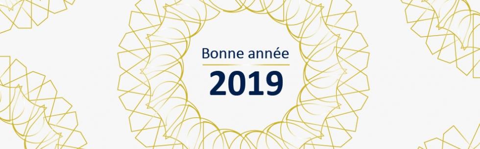 Meilleurs voeux pour cette année 2019